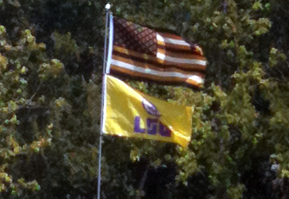 LSU / American Black and Gold Flag